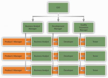 An example of a matrix structure at a software development company ...